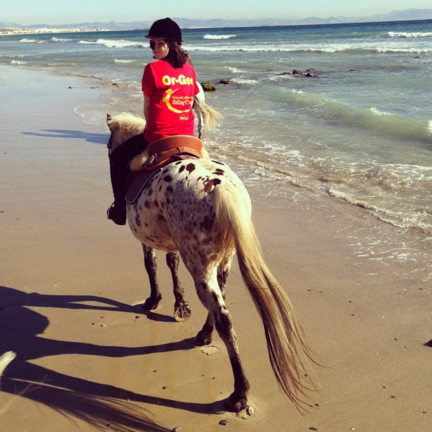 Tarifa Spain, horse riding beach